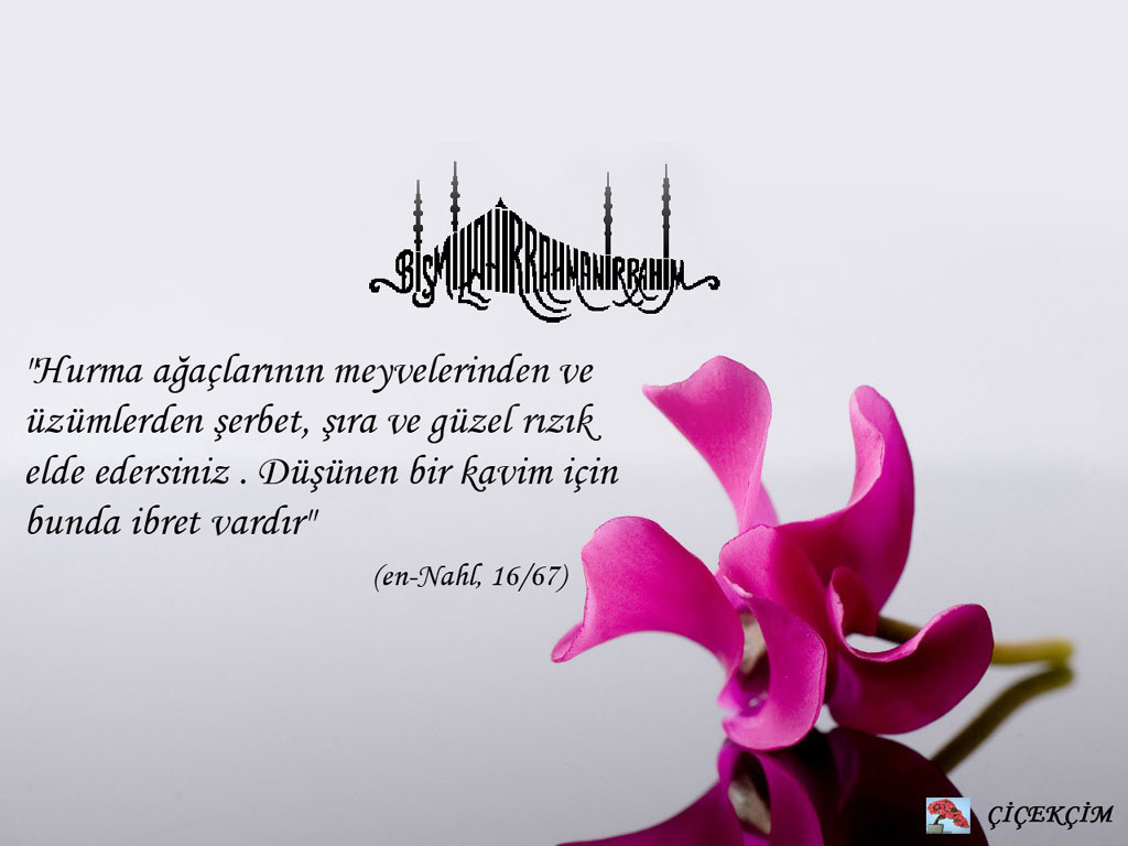 Download 700 Background Quotes Islami HD Terbaru